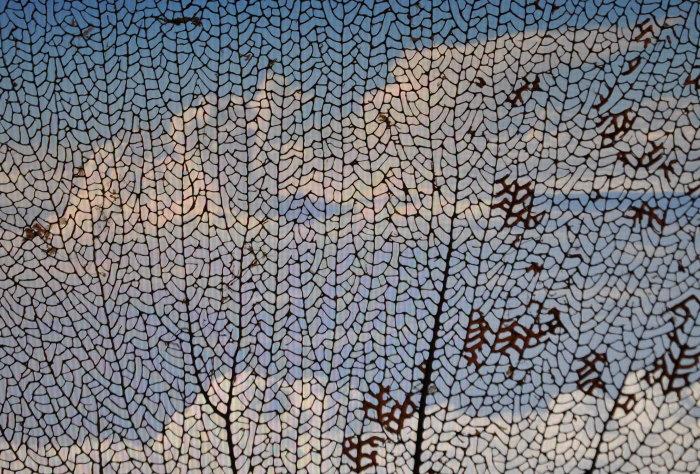 Foto: Cloud-Netz, Ludger Schmitz, CC-BY-NC 3.0